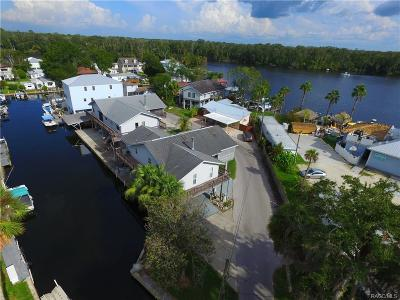 Homosassa Single Family Home For Sale: 10331 W Port Court