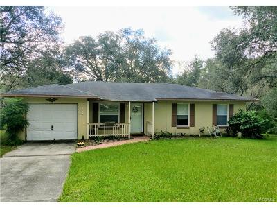 Floral City Single Family Home For Sale: 7824 E Savannah Drive