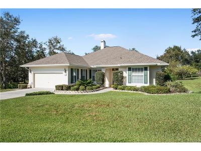 HOMOSASSA Single Family Home For Sale: 3 Deerwood Drive