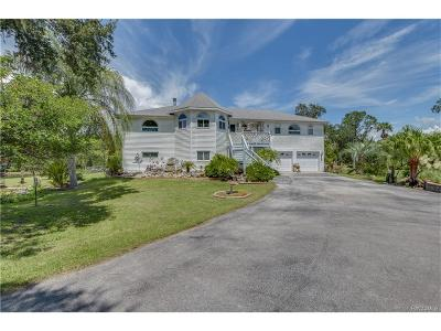 Homosassa Single Family Home For Sale: 6577 S Beagle Drive