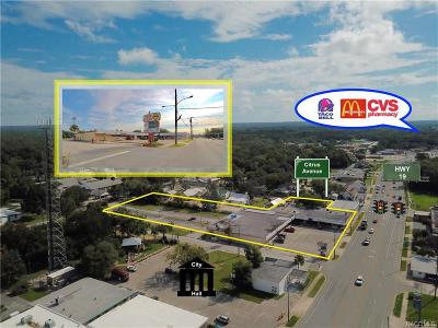 Crystal River Commercial For Sale: 37 NW Us Highway 19