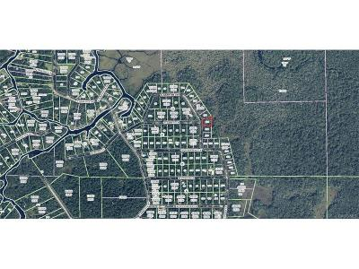 Residential Lots & Land For Sale: 6230 S Banyon Drive