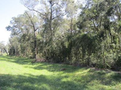Floral City Residential Lots & Land For Sale: 9319 S Florida Avenue