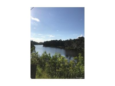 Crystal River Residential Lots & Land For Sale: 1312 S Estuary Drive N