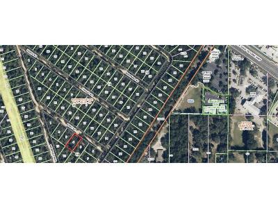 Inverness FL Residential Lots & Land For Sale: $2,990