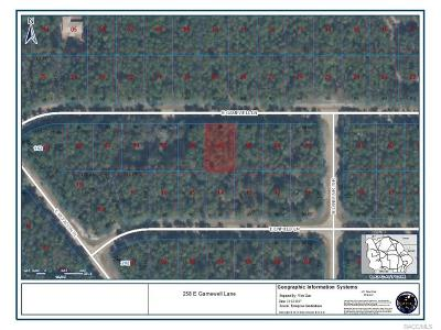 Citrus Springs Residential Lots & Land For Sale: 258 E Gamewell Lane