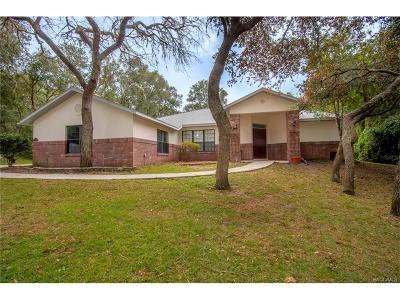 Hernando FL Single Family Home For Sale: $294,900