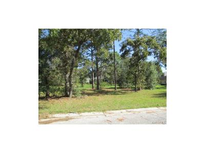 Residential Lots & Land For Sale: 3373 N Bent Tree Point