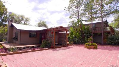 Homosassa Single Family Home For Sale: 6935 S Haulover Point
