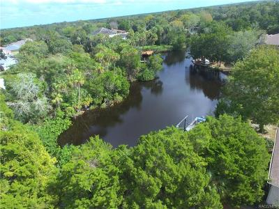 Homosassa Residential Lots & Land For Sale: 5271 S Running Brook Drive