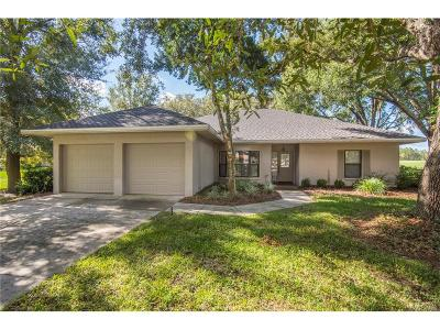 Lecanto Single Family Home For Sale: 3000 W Bermuda Dunes Drive