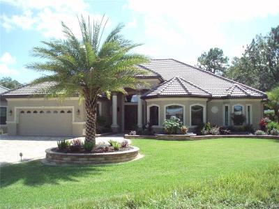 Hernando FL Single Family Home For Sale: $729,000