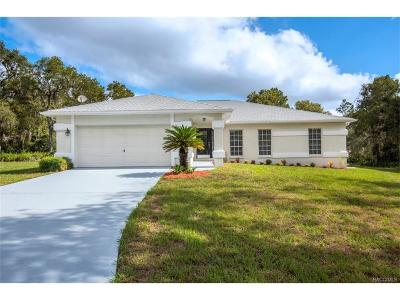 Homosassa Single Family Home For Sale: 759 S Curry Point