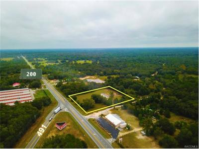 Hernando Commercial For Sale: 4303 N Hwy 200 Drive