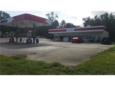 Crystal River Commercial For Sale: 5890 W Gulf To Lake Highway