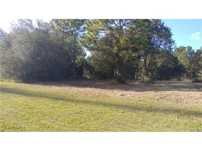 Crystal River Residential Lots & Land For Sale: 6248 N Suncoast Boulevard