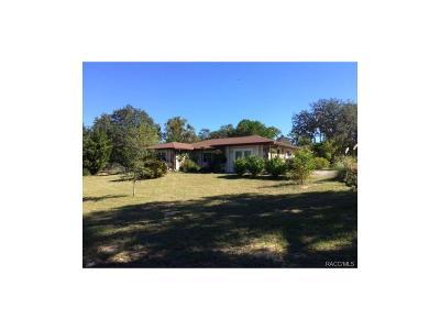 Lecanto Single Family Home For Sale: 99 S Salisbury Terrace