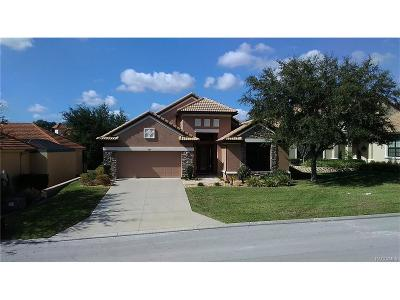 Hernando Single Family Home For Sale: 997 W Skyview Landings Drive #23A