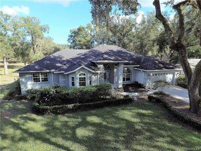 Citrus County Single Family Home For Sale: 5109 S Pointe Drive