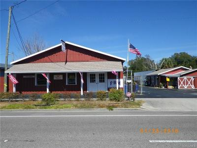 Crystal River Commercial For Sale: 717 NE 5th Street