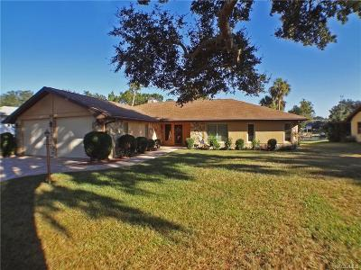 Riverhaven Village Single Family Home For Sale: 5035 S Deep Water Point