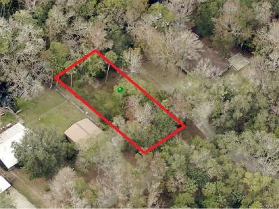 Citrus County Residential Lots & Land For Sale: 8960 W White Dogwood Drive