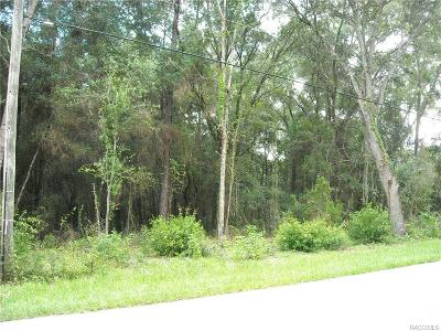Hernando Residential Lots & Land For Sale