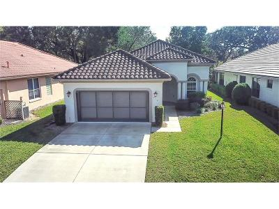 Hernando Single Family Home For Sale: 710 W Doerr Path