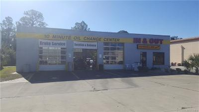 Citrus County Commercial For Sale: 8494 W Grover Cleveland Boulevard