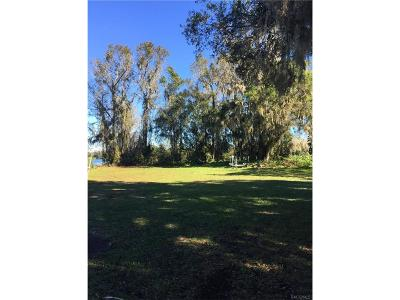 Floral City FL Residential Lots & Land For Sale: $114,900