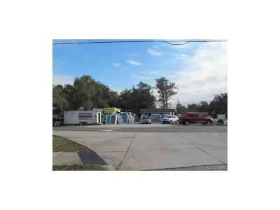 Citrus County Commercial For Sale: 9699 E Gospel Island Road
