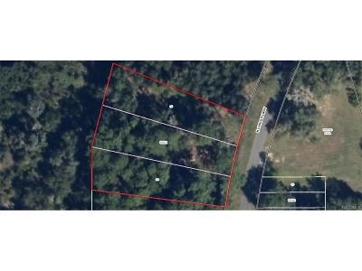 Inverness Residential Lots & Land For Sale: 1132 N Christy Way