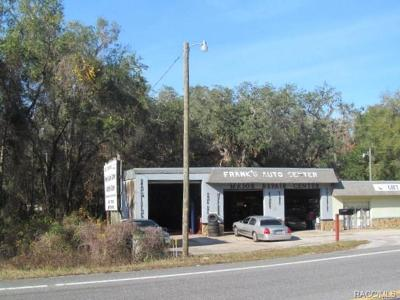 Citrus County Commercial For Sale: 2115 N Florida Avenue