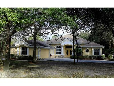 Hernando FL Single Family Home For Sale: $399,900