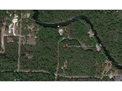 Crystal River Residential Lots & Land For Sale: 10521 N Dawnflower Point