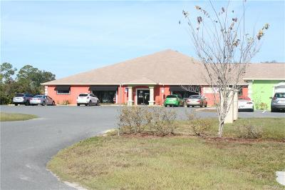 Citrus County Commercial For Sale: 8471 W Periwinkle Lane
