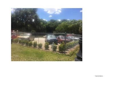 Citrus County Commercial For Sale: 7780 S Florida Avenue