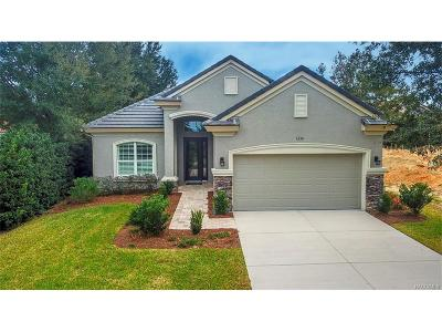 Hernando FL Single Family Home For Sale: $329,000