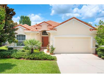 Hernando FL Single Family Home For Sale: $315,000