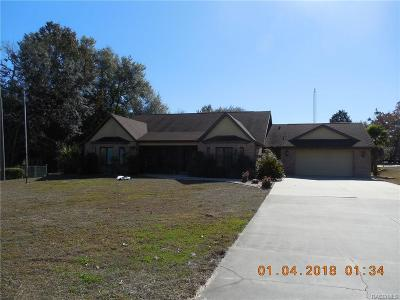 Lecanto FL Single Family Home For Sale: $380,000