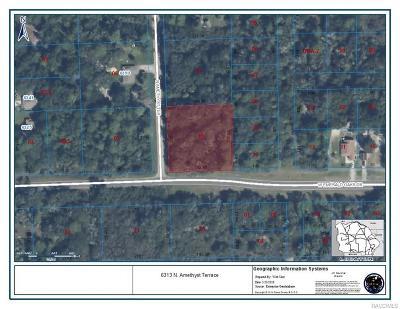 Crystal River Residential Lots & Land For Sale: 6313 N Amethyst Terrace