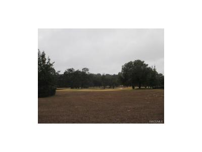 Lecanto FL Residential Lots & Land For Sale: $140,000
