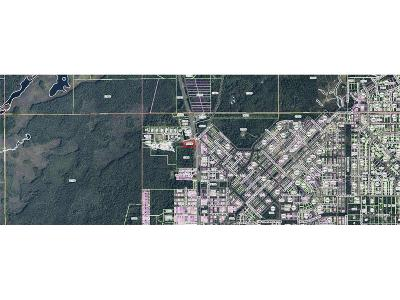 Homosassa Residential Lots & Land For Sale: 8650 W Jump Court
