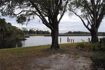 Citrus County Rental For Rent: 11384 W Bayshore Drive
