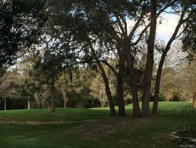 Lecanto Residential Lots & Land For Sale: 2940 W Plantation Pines Court