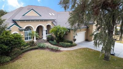 Citrus County Single Family Home For Sale: 131 SE 2nd Avenue