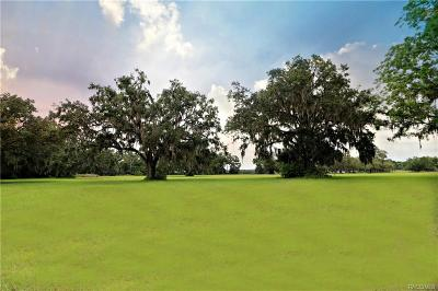 Citrus County Residential Lots & Land For Sale: 4507 E Stage Coach Trail