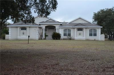 Lecanto Single Family Home For Sale: 7347 S Elsie Point