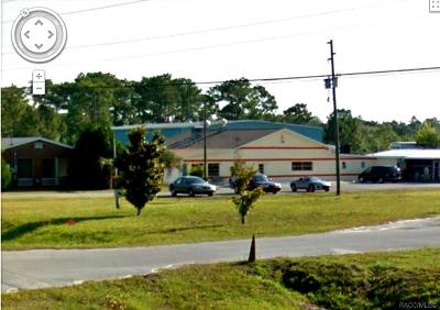 Citrus County Commercial For Sale: 7429 S Suncoast Boulevard