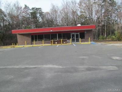 Citrus County Commercial For Sale: 8011 Miss Maggie Drive